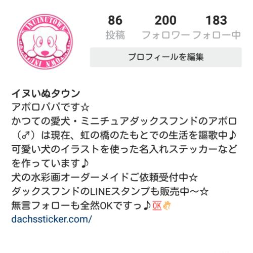 Instagram ダックスフンド