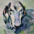 犬の水彩画 オーダーメイド