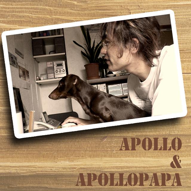 アポロパパのお仕事日記ブログ
