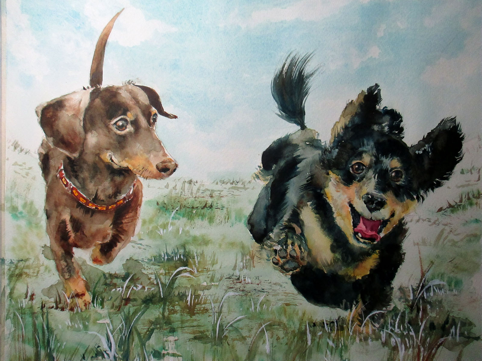 愛犬の水彩画オーダーメイドのご依頼をいただき描かせていただきました♪