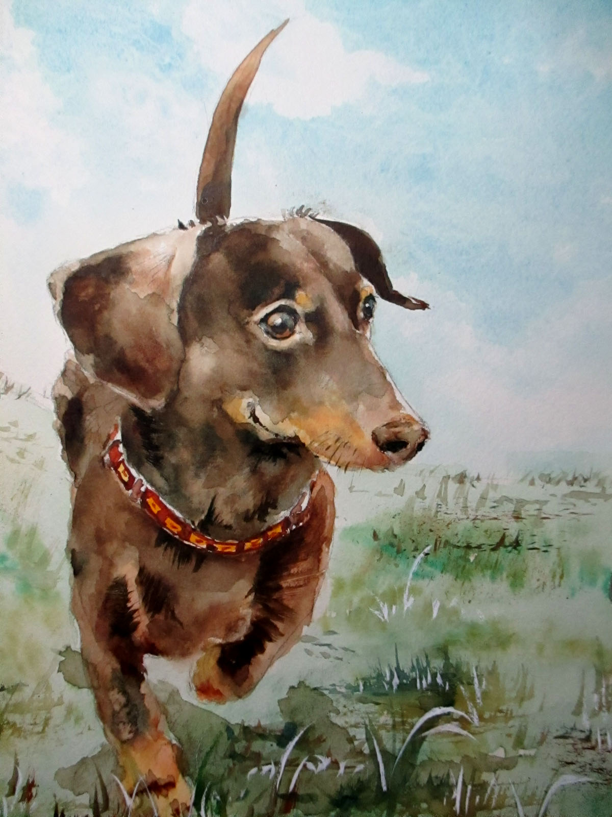 愛犬アポロの水彩画