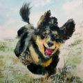 お写真を元に愛犬の肖像画を制作いたします♪
