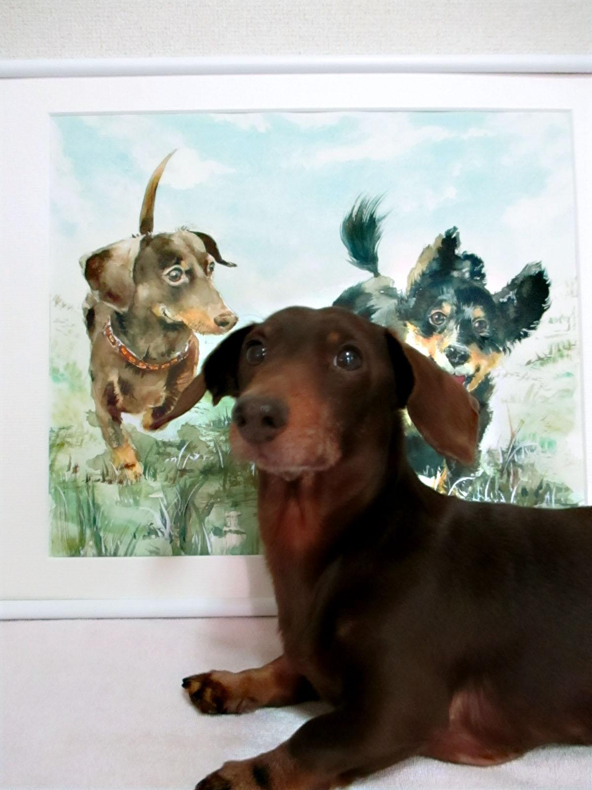 アポロパパが描く愛犬の水彩画オーダーメイドご注文受付中です♪